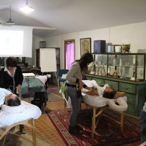 Massage Cupping Formation